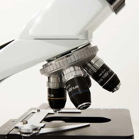 Microscopy & Sample preparation